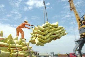 Thêm 50 nghìn tấn gạo Việt Nam sẽ được xuất khẩu sang Bangladesh