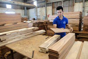 Sử dụng vật liệu gỗ: Phải bảo đảm tính hợp pháp