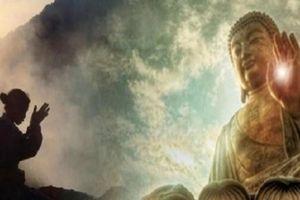 Người tâm Phật nhưng khẩu xà thì khó mà giữ được vinh hoa