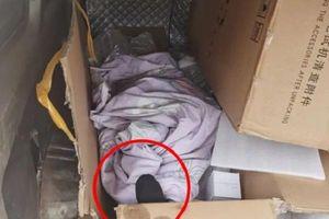 Sự thật ngỡ ngàng phía sau vật thể như bàn chân người khiến shipper hoảng hồn báo cảnh sát