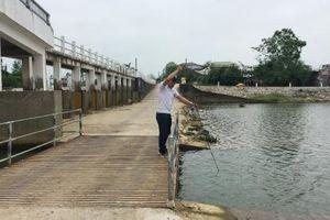 Độ mặn hệ thống thủy lợi Tả Trạch đảm bảo sản xuất nông nghiệp
