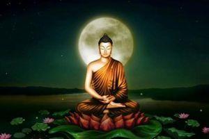 Phật dạy: 7 cách tích đức cải tạo vận thế mà ai cũng làm được