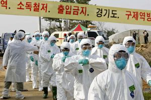 Hàn Quốc ghi nhận ca mới nhiễm cúm gia cầm độc tính cao
