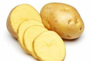 Khoai tây - Thực phẩm tuyệt vời cho sức khỏe