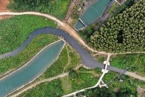 Ngày Quốc tế các dòng sông: Hành động 'xanh' cho mạch nguồn chảy mãi