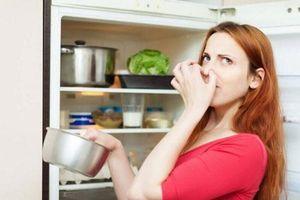 Mẹo khử mùi hôi trong tủ lạnh cực hiệu quả bằng những nguyên liệu tự nhiên sẵn có