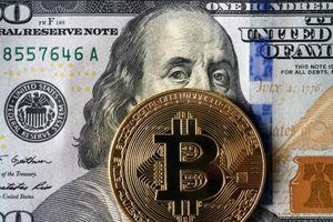 Bitcoin càng thành công, thế giới càng thất bại