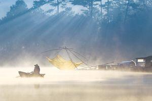Sương sớm trên hồ Tuyền Lâm