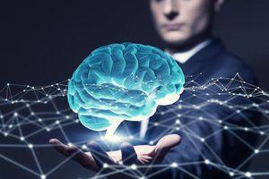 GS ĐH Harvard chỉ ra 8 loại trí thông minh