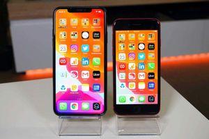Cùng tầm giá, nên mua iPhone XS Max hay iPhone SE 2020?