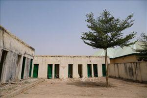 Nigeria đẩy lùi một vụ tấn công vũ trang nhằm vào trường học