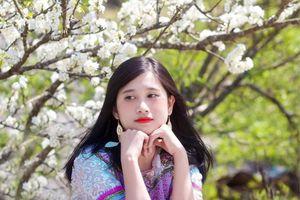 Cô giáo trẻ hóa thân thành 'nàng thơ' giữa rừng hoa mận Sa Pa