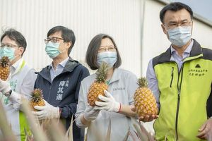 TQ tạo ra 'cuộc khủng hoảng dứa' cho Đài Loan, Nhật Bản giải vây