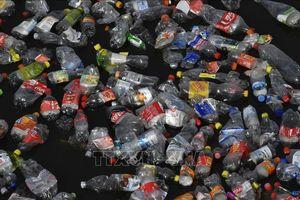 Trí thức trẻ ASEAN và Nhật Bản nêu đề xuất giảm ô nhiễm rác nhựa đại dương
