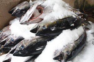 3 thực phẩm cực độc, người bán chưa chắc đã dám ăn