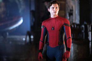 Spider Man Tom Holland gặp chấn thương nặng khi ghi hình phim mới