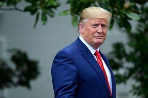 Ông Trump có thể muốn tái tranh cử tổng thống hơn nếu cuộc đua có Meghan Markle