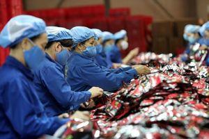 Bứt tốc xuất khẩu, kiếm tìm động lực từ các FTA