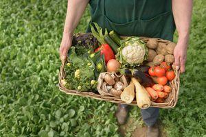Mô hình ''từ trang trại đến bàn ăn'': Giàu tiềm năng, nhiều thách thức