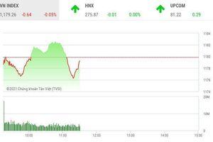 Giao dịch chứng khoán sáng 17/3: Thị trường rung lắc, cổ phiếu phân bón 'thăng hoa'