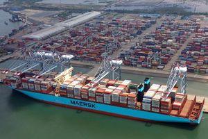 Cước phí vận tải biển tăng cao: Hàng đội giá, xuất khẩu lao đao