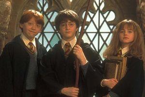 Dàn diễn viên nhí của 'Harry Potter' thay đổi thế nào sau gần 20 năm?