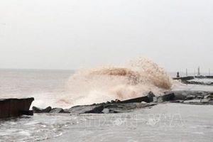 Chủ động ứng phó với gió mạnh, sóng lớn trên biển