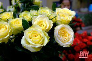Độc đáo nghề làm hoa 'bất tử'