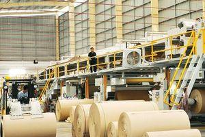 Nhiều công ty bao bì lớn của Việt Nam bị thâu tóm