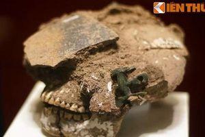 Soi món trang sức bí ẩn trên sọ người Nam Bộ 2.000 năm trước