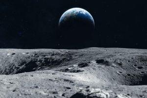 Đề phòng ngày tận thế, lưu trữ DNA của 6,7 triệu loài trên Mặt trăng?