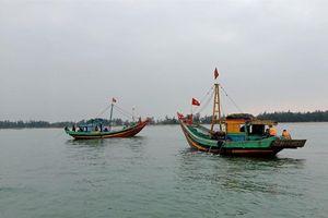 Bắt 5 tàu cá khai thác sai quy định