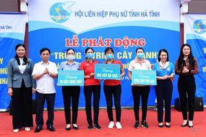 Phụ nữ Hà Tĩnh phát động 'trồng 1 triệu cây xanh'