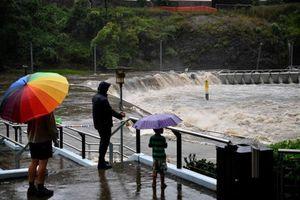 Australia: Lũ lụt khiến hàng trăm người phải sơ tán