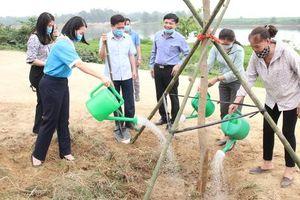 Hà Tĩnh: Phụ nữ phát động 'trồng 1 triệu cây xanh'