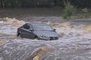 Cận cảnh thảm họa thiên nhiên 'trăm năm có một' ở Australia