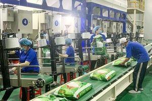 EVFTA thúc đẩy xuất khẩu của Việt Nam sang thị trường EU