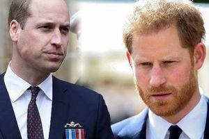 Hoàng tử William trở nên xa cách với em trai bởi một thông báo ngông cuồng, xúc phạm Nữ hoàng Anh của vợ chồng Meghan