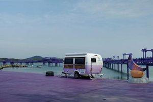Độc đáo hòn đảo màu tím ở Hàn Quốc 'hút hồn' khách du lịch