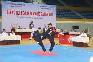 300 VĐV tham dự Giải vô địch Pencak Silat quốc gia