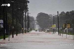 Lũ lụt nghiêm trọng, Australia sơ tán hàng nghìn dân
