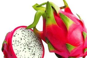 Các loại quả không ngọt nhưng chứa hàm lượng đường cao, người tiểu đường cần lưu ý