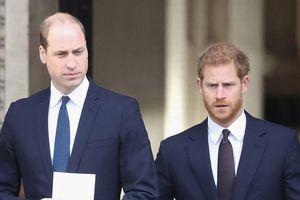 Trước lúc rời hoàng gia, Harry đã trải qua những thăng trầm nào cùng anh trai William?