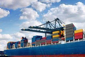 2 tháng đầu năm 2021: Hoạt động thương mại song phương Việt Nam - Ấn Độ tăng 2 tỷ USD