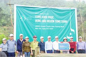 Quảng Bình: Khởi động dự án phục hồi rừng đầu nguồn sông Gianh