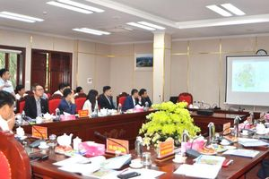 Song Cong city leaders work with investors