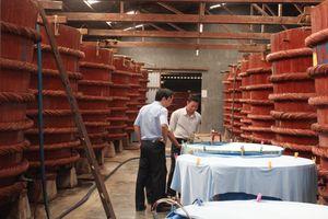 Kiên Giang đưa 'Nghề làm nước mắm Phú Quốc' vào Danh mục di sản văn hóa