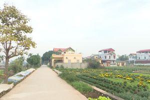 Huyện Thường Tín (Hà Nội) đạt chuẩn nông thôn mới