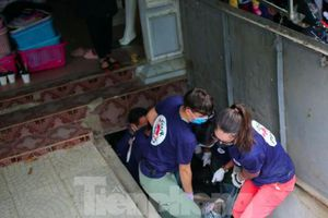 Giải cứu, chuyển giao về Ninh Bình 2 gấu ngựa và 92 động vật hoang dã