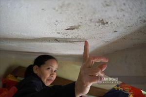 Cuộc sống chen chúc trong những căn nhà xập xệ, xiêu vẹo ở phố cổ Hà Nội